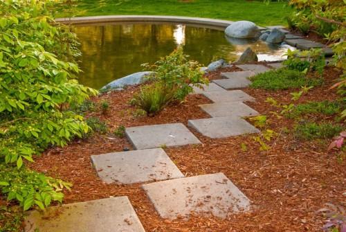Zahradní jezírko může zdobit i vaši zahradu